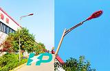 菏泽 莱芜 青岛 淄博太阳能路灯/太阳能路灯价格/太阳能路灯厂家