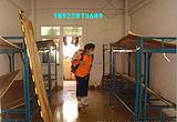 深圳南山科技园杀虫公司0755-88827896南头|南油|西丽