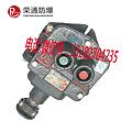 荣通BZA1-5/36-2矿用隔爆型控制按钮 厂家直销 大量供应