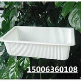 鸭血豆腐食品级塑料盒生产厂家