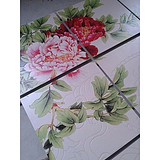背景墙 地板砖 工艺品/uv彩印加工 大幅度瓷砖喷图喷画印刷打印
