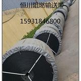 阻燃输送带 保定恒川阻燃输送带 整芯阻燃带耐磨、抗静电防水、