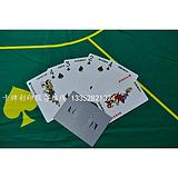 根据客户要求加工定制塑料扑克牌厂