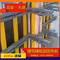 轻型钢模板支撑斜支撑-建筑设备支撑技术要求