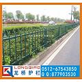 浙江瑞安绿化带护栏 瑞安路边护栏 镀锌静电喷涂烤漆护栏 龙桥生产