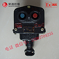 供应BZA1-5/36-2矿用双联隔爆型控制按钮 防爆控制按钮