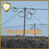 Sns被动防护网直供 被动拦截网 山体防护网