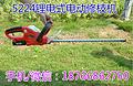 上海双刃便携式锂电直流充电修枝剪 电动修枝机 手持式绿篱机篱笆剪