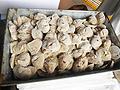 万斛食品牡蛎无冰牡蛎肉供应