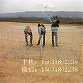 供应镀锌铁丝石笼网 格宾防洪石笼网厂家直销六角边坡防护石笼网