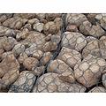 厂家批发包塑石笼网 石笼网 镀锌六角网 镀锌石笼网