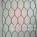 批发六角浸塑石笼网 镀锌钢丝石笼网厂家直销河滩安全防护石笼网